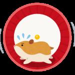 animal_hamstert_mawashiguruma